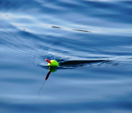 Pescaria na lagoa